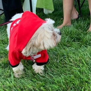 """Red """"the boss"""" dog hoodie"""